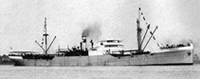 Steamer Nervier